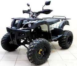ATV 250 Avenger Tungus